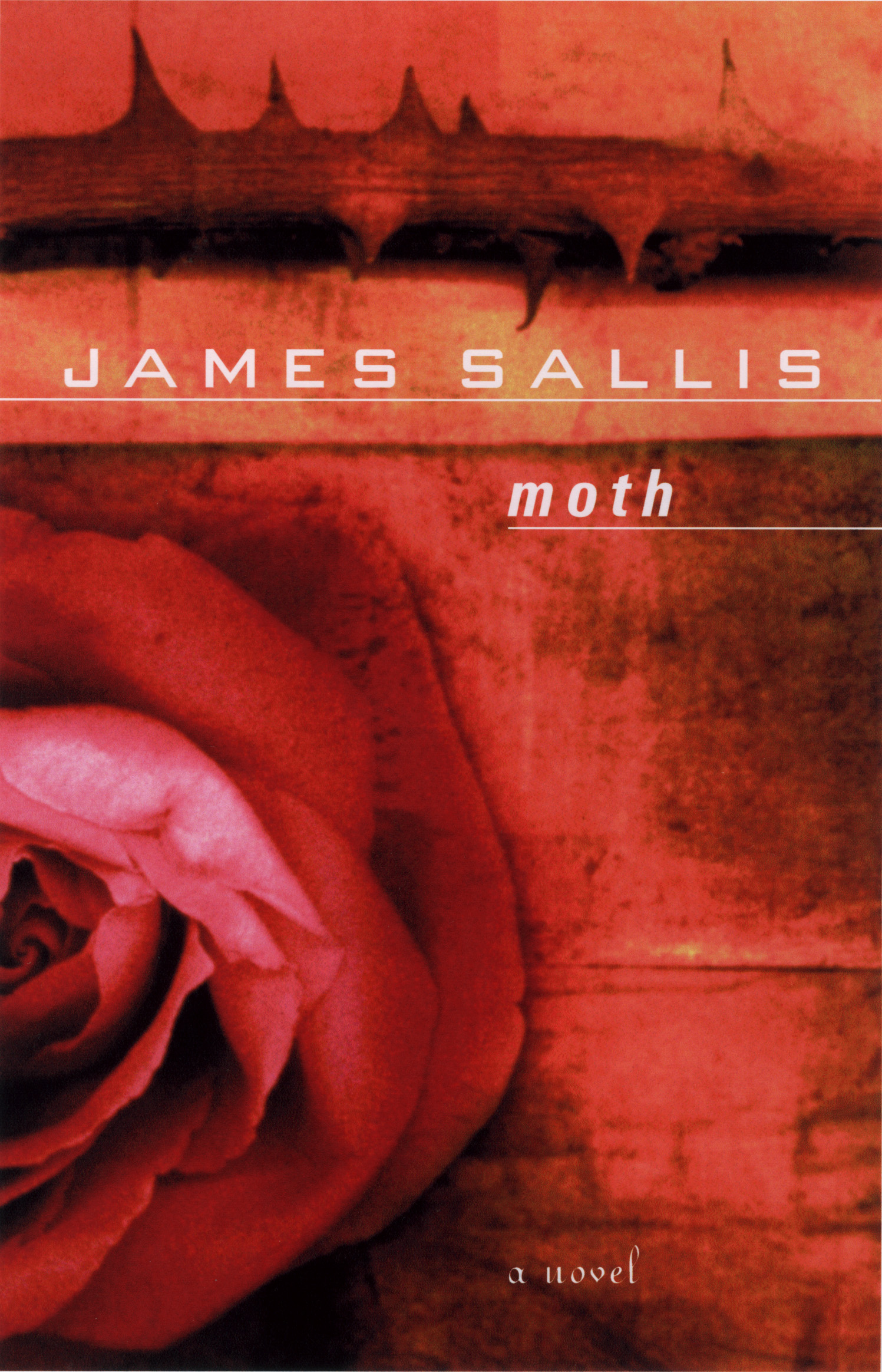 Cover for the US reissue of Moth